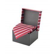 AP1228-08 - Cravata