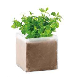 MO9546-13 - Compost cu seminte MINT - MINT